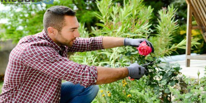 Berkebun Punya Manfaat untuk Kesehatan, Ini 7 di Antaranya!